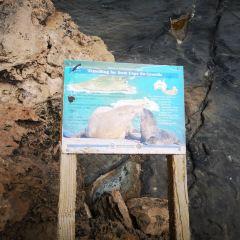 弗林德斯·蔡斯國家公園用戶圖片