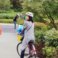 Shangjiangbu Bridge User Photo