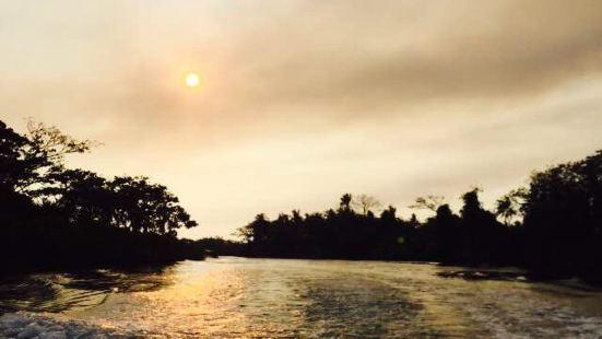 神山脚下的九鲁河,河流湍急,树木茂盛。别有一种亚马逊雨林的意