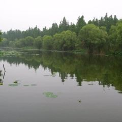 Donghu Wetland Park User Photo