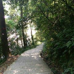 치산 관광단지 여행 사진