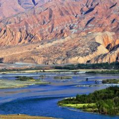 千姿湖(黃河清濕地公園)用戶圖片
