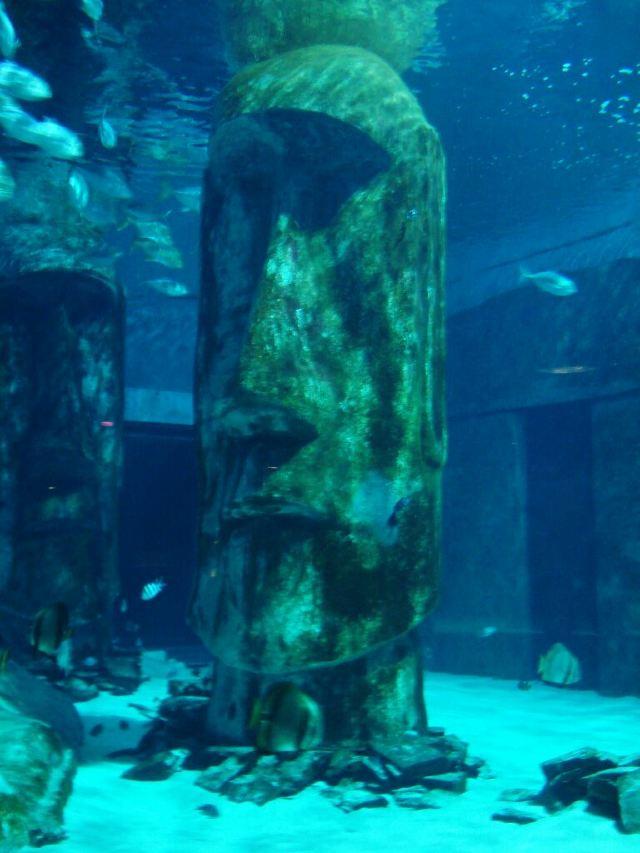 東倫敦海洋館