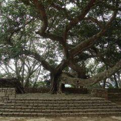 Ambohimanga User Photo