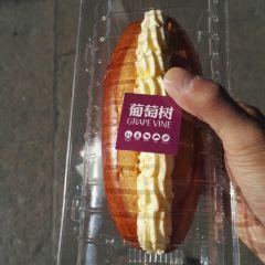 葡萄樹(銅鑼灣店)用戶圖片