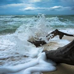華路海灘張用戶圖片