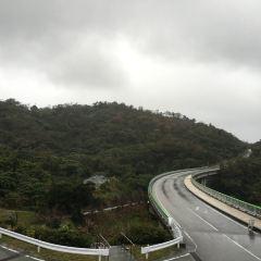 八重岳のユーザー投稿写真