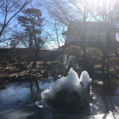 小諸城址懐古園のユーザー投稿写真
