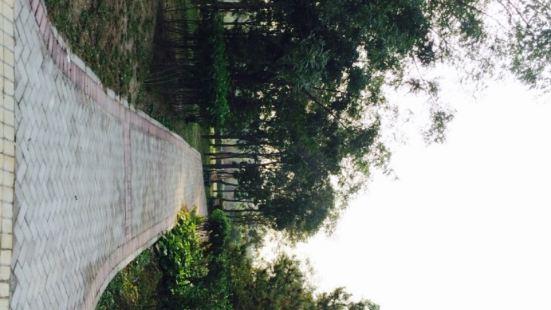 將台濱河公園