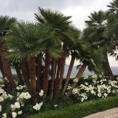 羅斯柴爾德花園別苑用戶圖片