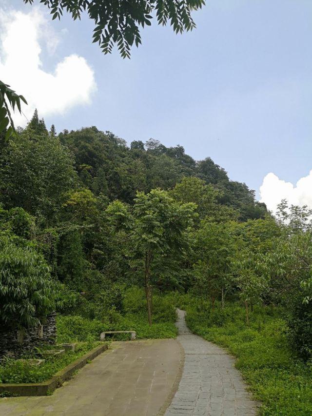 Hongxia Canyon