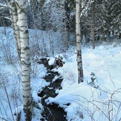 Sognsvann Lake User Photo