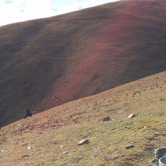 川藏高速公路南線用戶圖片