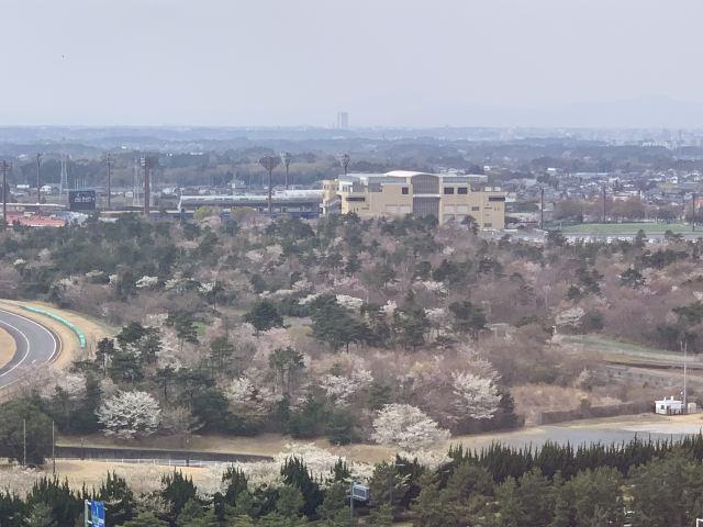 國營常陸海濱公園