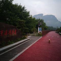 Zhonghua Wuyi Tea Expo Park User Photo