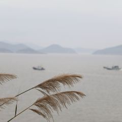 Dongmen Island Fishing Village User Photo