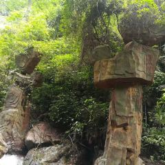 홍시 관광단지 여행 사진