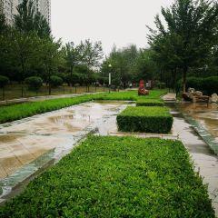 魯青水上公園用戶圖片