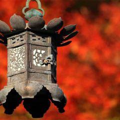 圓應寺張用戶圖片