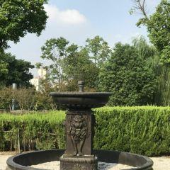 白鴿巢公園用戶圖片