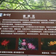 Yanshan Waterfall User Photo