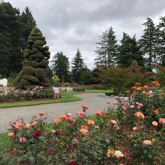 P-Patch Community Gardens User Photo