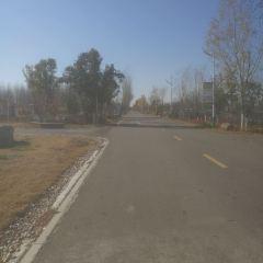 Linyongcheng Botanical Garden User Photo