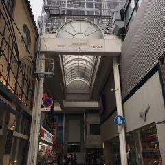 CHIBO Dotomboriten User Photo