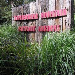 Tamborine Mountain Botanic Gardens User Photo