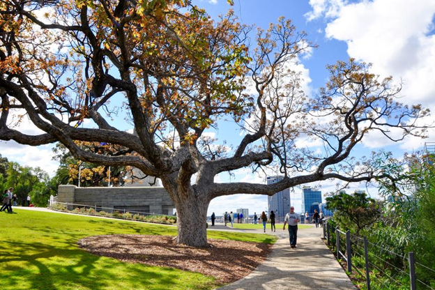 March School Holidays 2020 in Perth City: 12 Free Things To Do With Kids