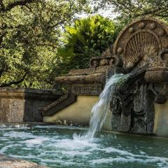 San Antonio Botanical Garden User Photo