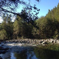 Lynn Canyon Park User Photo