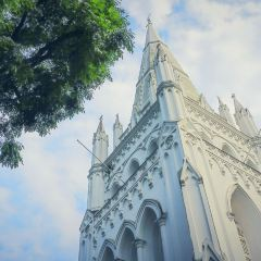 St Andrew's Cathedral User Photo