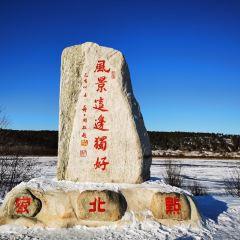 北極村用戶圖片