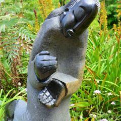 康斯坦博西植物園用戶圖片