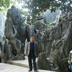 Fujian Linyin Stone Forest User Photo