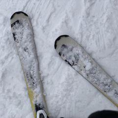 Yongpyong Ski Resort User Photo
