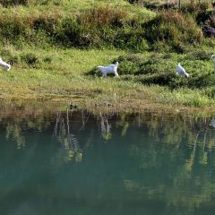 湄江國家地質公園用戶圖片