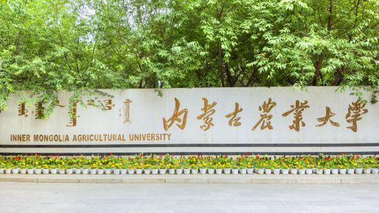 內蒙古農業大學