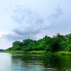 ヴィクトリア湖のユーザー投稿写真