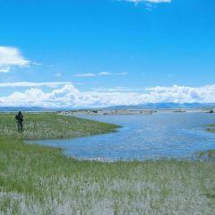 可哥西裡自然保護區不凍泉用戶圖片