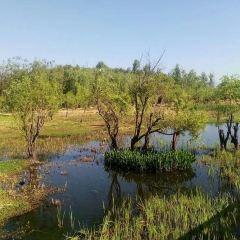Erhaiyue Wetland Park User Photo