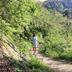 Qingxi Reservoir User Photo
