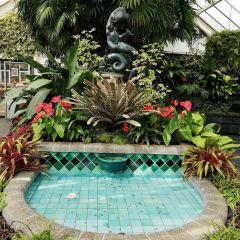 威靈頓植物園用戶圖片