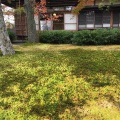 箱根美術館張用戶圖片