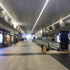 氹仔客運碼頭用戶圖片