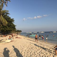 Alona Beach User Photo