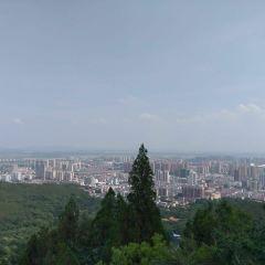 Xiangshan Mountain Forest Park User Photo