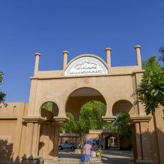 Al Ain Palace Museum User Photo