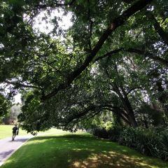 Rosalind Park User Photo